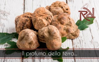 The truffle is again the protagonist of our dishes! Ristorante da Rosa Como